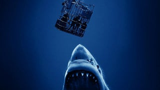 Open-Water-3-Cage-Dive-Just-One-Productions-2017-fb
