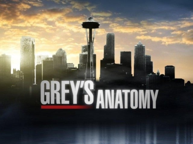 Here Are the Six New Interns for 'Grey's Anatomy' Season 14