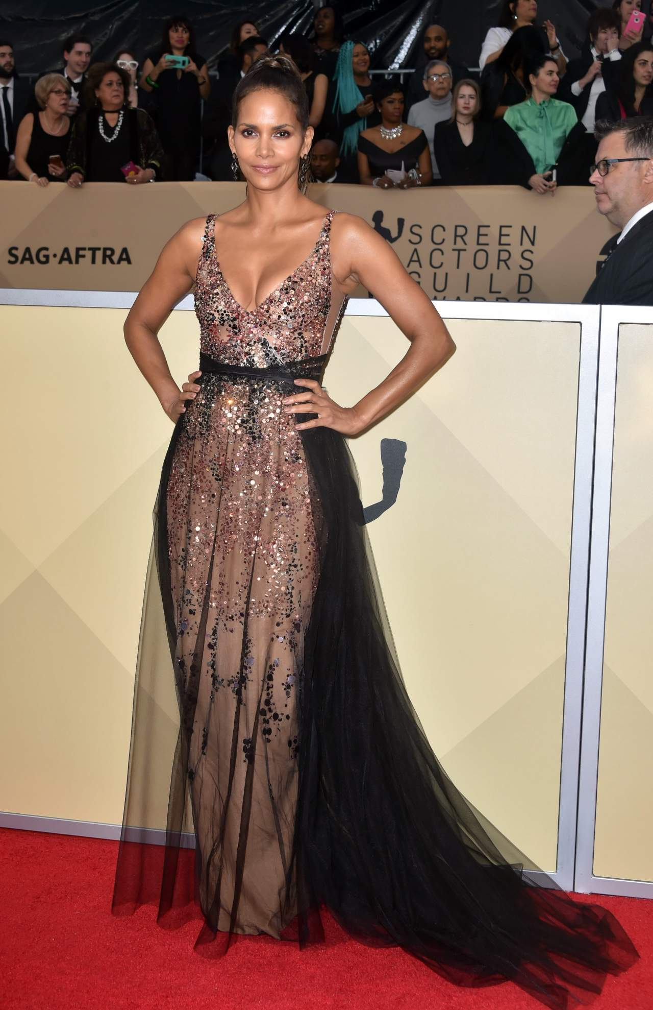 Halle Berry Glitters in \'Amazing\' Dress at SAG Awards