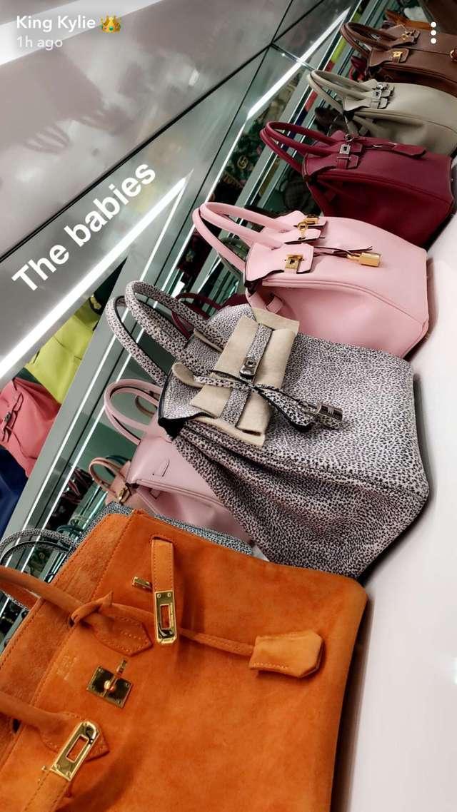 Inside Kylie Jenner S 1 Million Handbag Collection