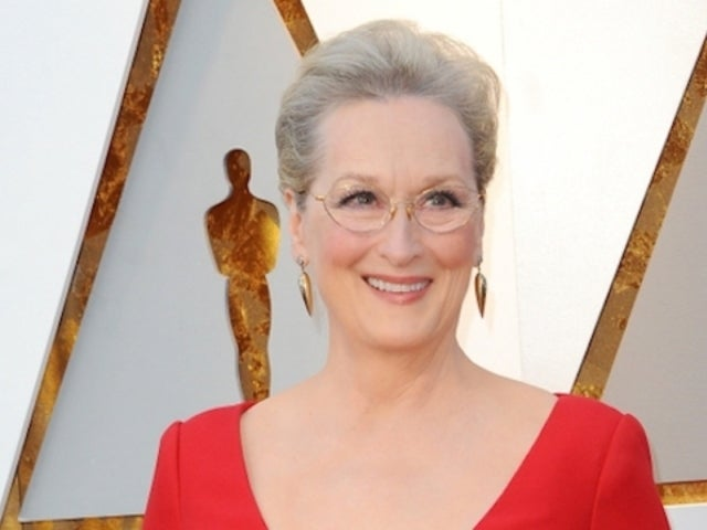 Social Media Sees Meryl Streep's Striking Resemblance to Fairy Godmother in 'Shrek 2'