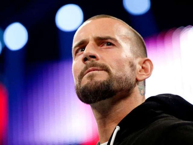 WWE Hall of Famer Knows How to Get CM Punk Back in Wrestling