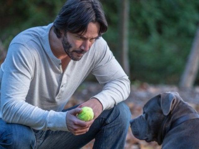John Wick's Dog Returns in Chapter 3 Set Photos