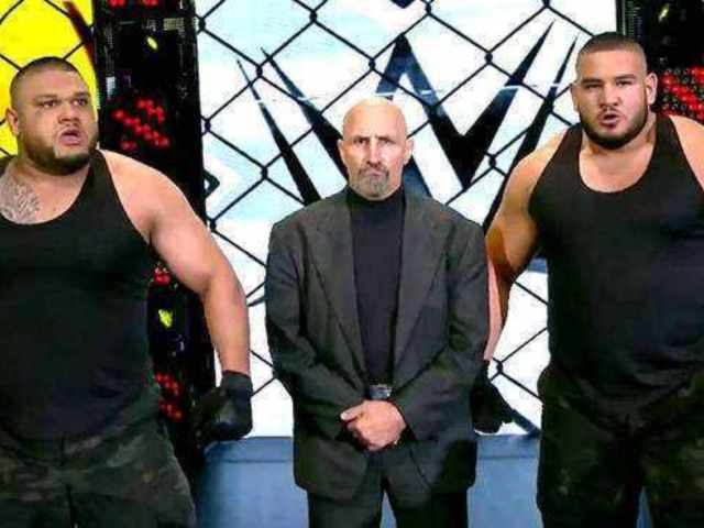 Paul Ellering Hints He Wanted to Stay With Authors of Pain on WWE's Main Roster