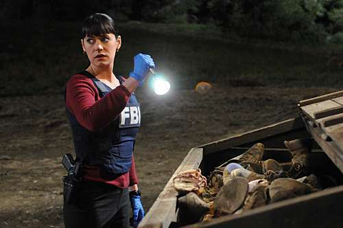 Criminal Minds To Hell... ...And Back