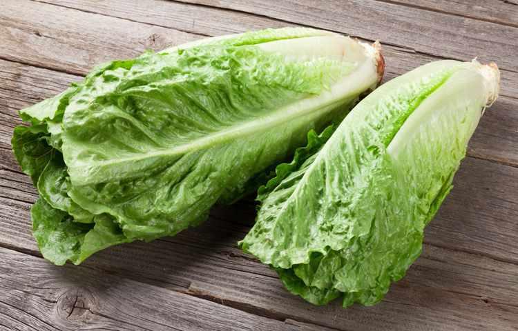 istock-romaine-lettuce