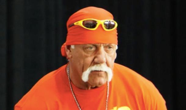 Hulk Hogan help tweet fans wwe