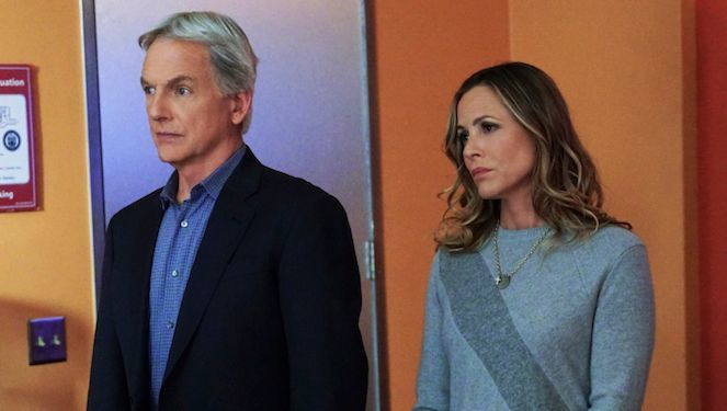 ncis-mark-harmon-maria-bello-cbs