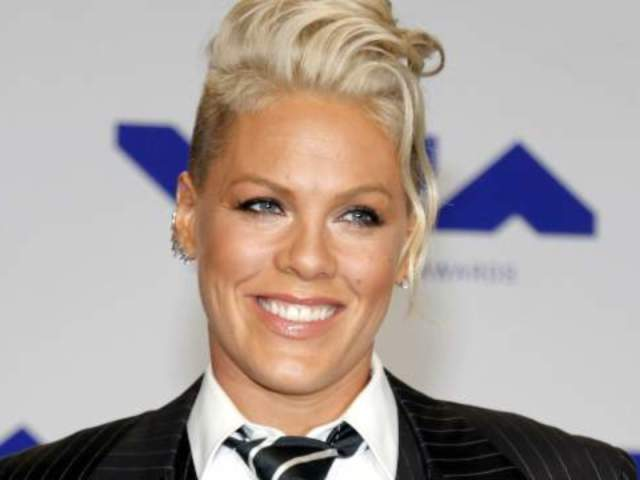 Pink Brushes off Hater's Remark About Her Family Dinner