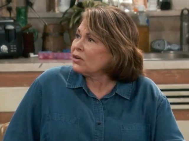 Roseanne Barr Calls Martin Luther King Jr. Her 'Idol' in New Interview