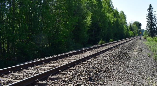 man-takes-selfie-woman-hit-train-sparks-outrage