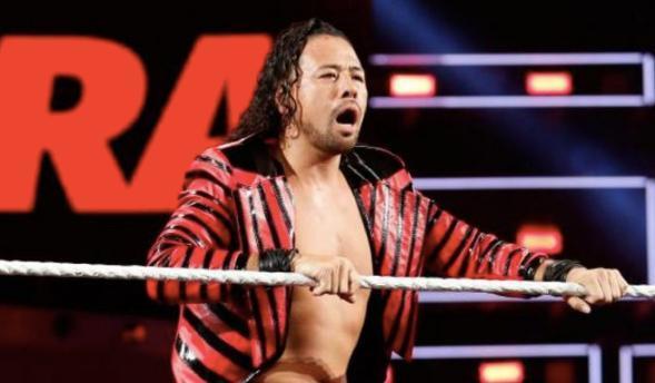 Shinsuke Nakamura WWE bittne by police dog