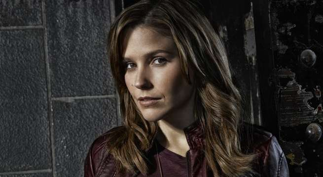 sophia bush pd
