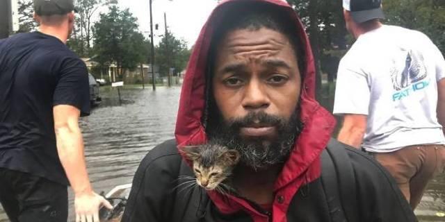 hurricane florence survivor cat getty images