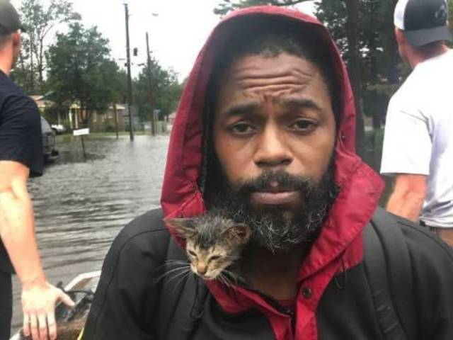 Photo of Hurricane Florence Survivor and Kitten Breaks Onlookers' Hearts