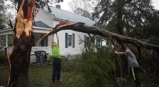 hurricane florence toppled over tree getty images