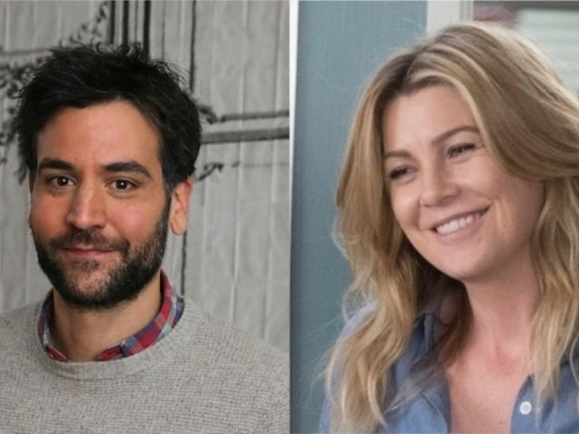 'HIMYM' Alum Josh Radnor to Guest on 'Grey's Anatomy' as Meredith's Potential Love Interest