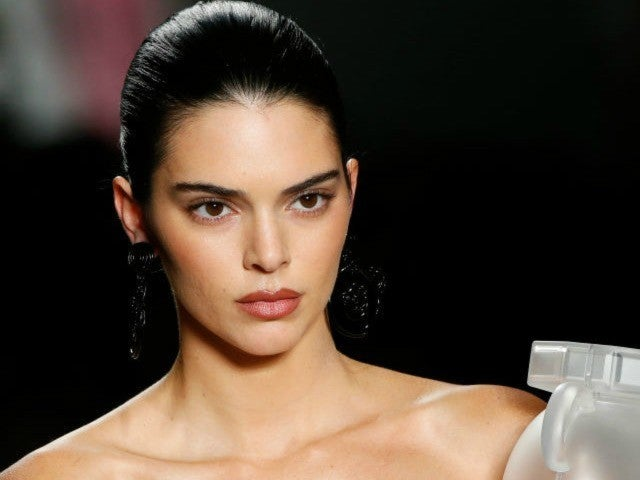Kendall Jenner Under Fire for Using Metal Link Collar on Her Dog