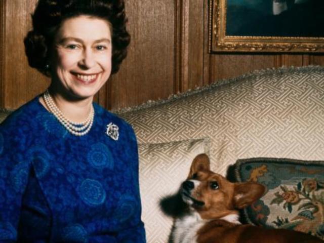 Queen Elizabeth Mourns Loss of Last Corgi