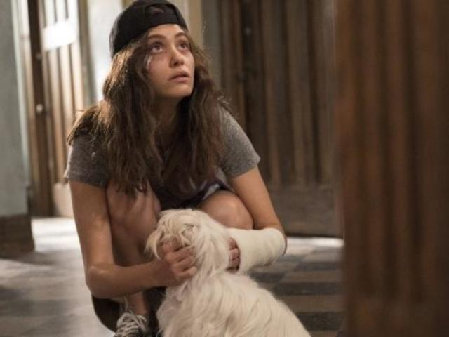 How the 'Shameless' Fall Finale Sets up Emmy Rossum's Exit
