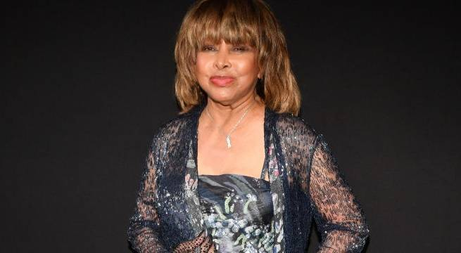 tina turner 2018 getty images