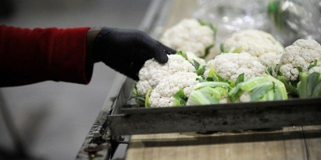 cauliflower-getty