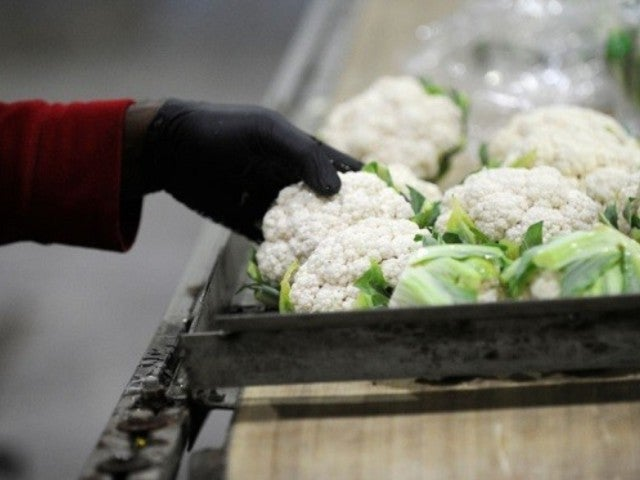 Farm Linked to Romaine Lettuce Scare Recalls Cauliflower Due to E coli Concerns