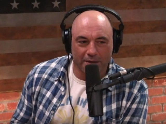 Joe Rogan Said He'd Vote for Donald Trump Over Joe Biden in Wake of Bernie Sanders Endorsement