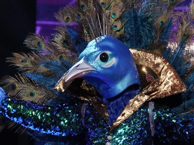 'The Masked Singer': Is Donny Osmond the Peacock?