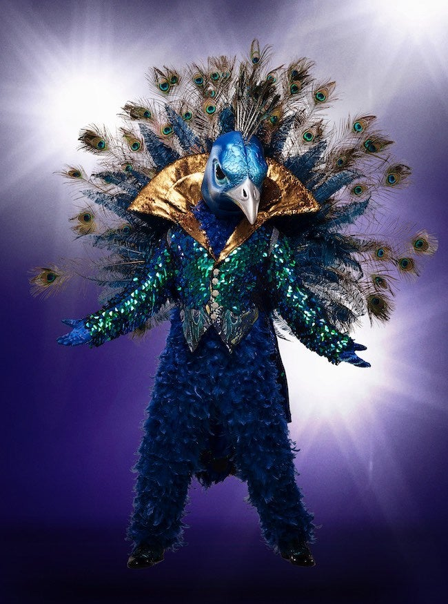 the-masked-singer-peacock-fox-michael-becker