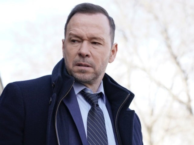 Does 'Blue Bloods' Star Donnie Wahlberg Do His Own Stunts?