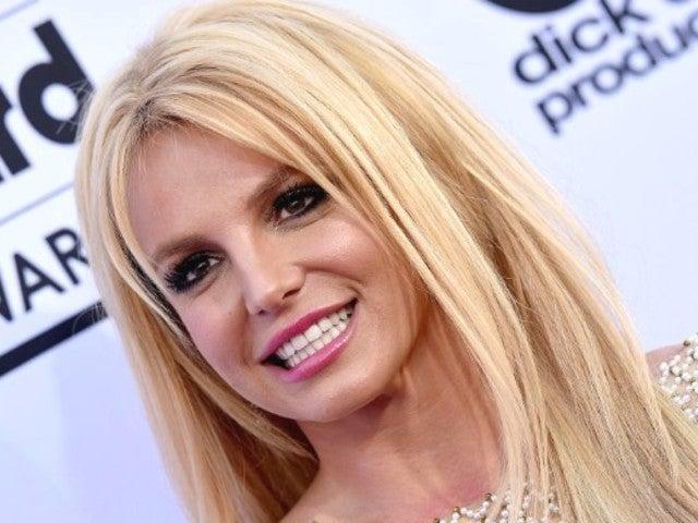 Britney Spears Soaks up the Sun With Zebra-Printed Bikini Following Instagram Account Rumors