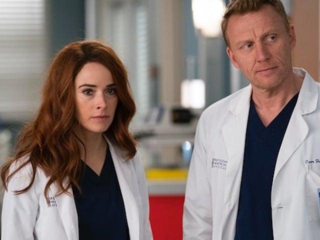 'Grey's Anatomy': Megan Hunt Returns for Surprise Visit