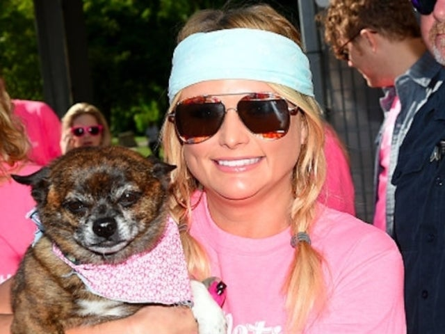 Miranda Lambert Celebrates National Mutt Day With Adorable Photos of Her 9 Dogs
