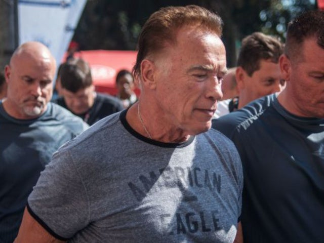 Arnold Schwarzenegger Slams 'Idiot' After Getting Drop-Kicked While Taking Photo