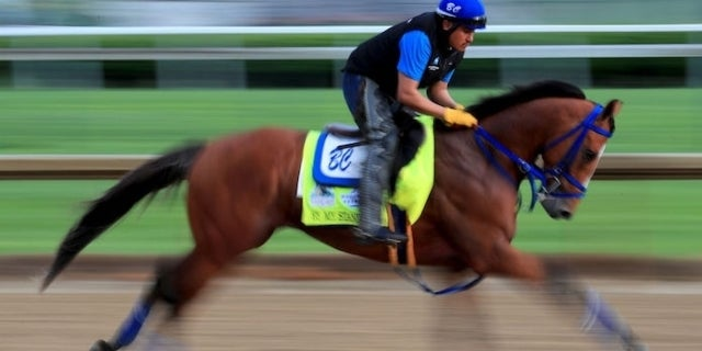 2019 kentucky derby top predictions odds and who could win