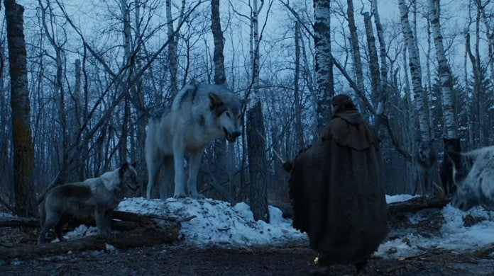 game-of-thrones-nymeria-hbo-yt