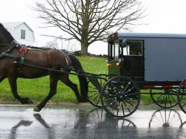 3 Children Dead After Truck Collides With Horse-Drawn Carriage in Michigan