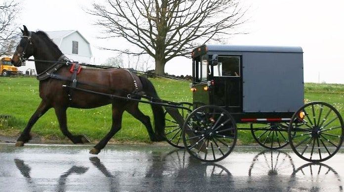 amish_buggy_accident