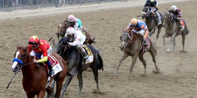 belmont_stakes_odds