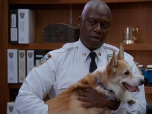 'Brooklyn Nine-Nine' Dog Who Played Cheddar Has Died
