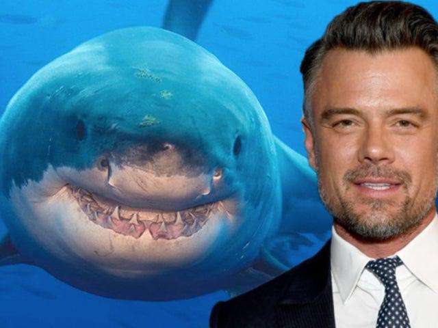 Shark Week: Discovery Releases 2019 Schedule, Including First Original Film Starring Josh Duhamel