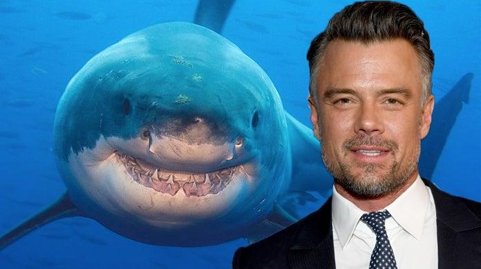duhamel_shark_week