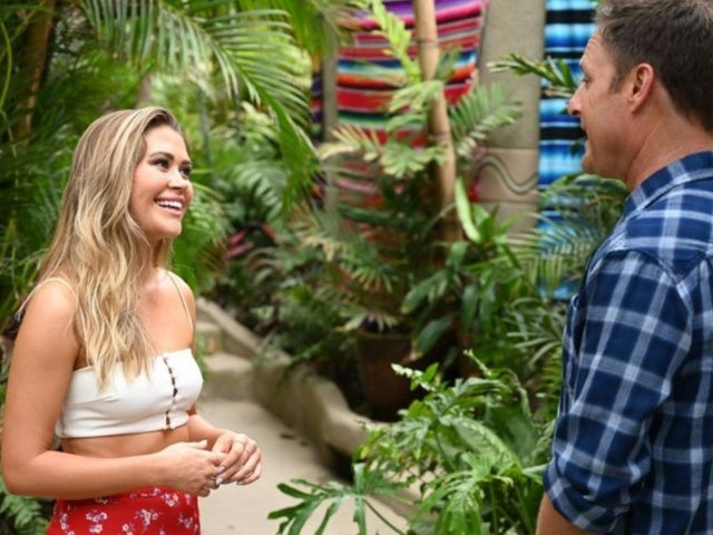 'Bachelor in Paradise' Host Chris Harrison Talks Blake Horstmann's Love 'Octagon'