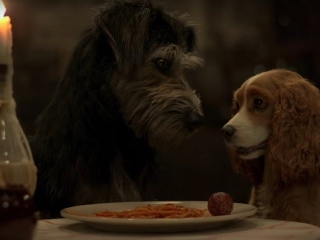 Disney+'s 'Lady and The Tramp' Live-Action Remake Trailer Arrives