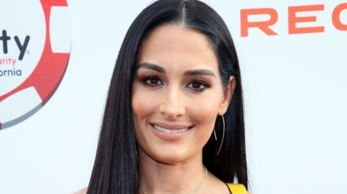 nikki bella David Livingston