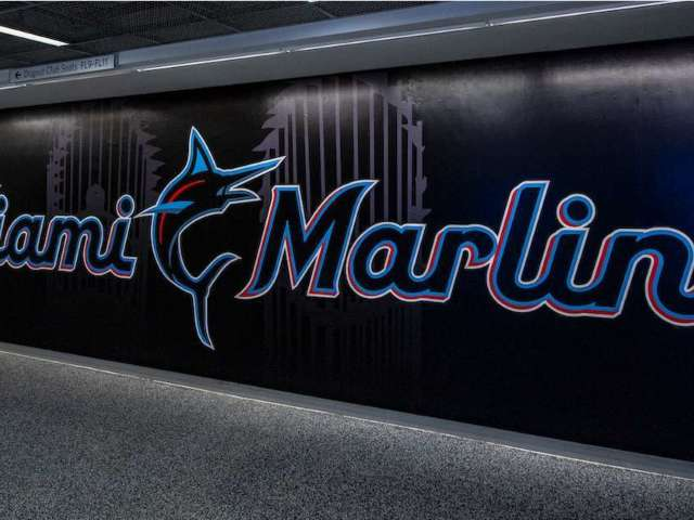 Marlins Apologize for Twitter Joke Saying Tampa Bay Rays Mascot Killed Steve Irwin