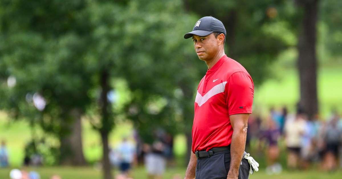 Tiger Woods knee procedure