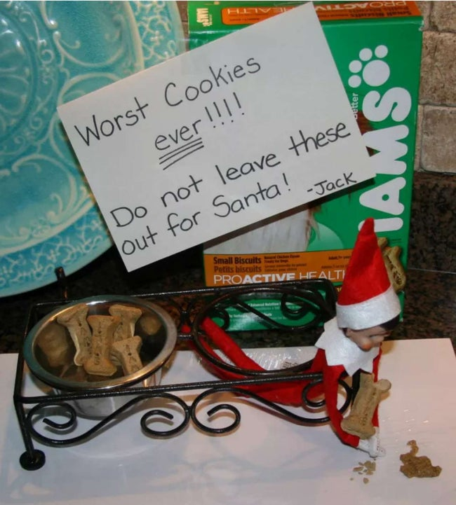 Elf-Dog-treats