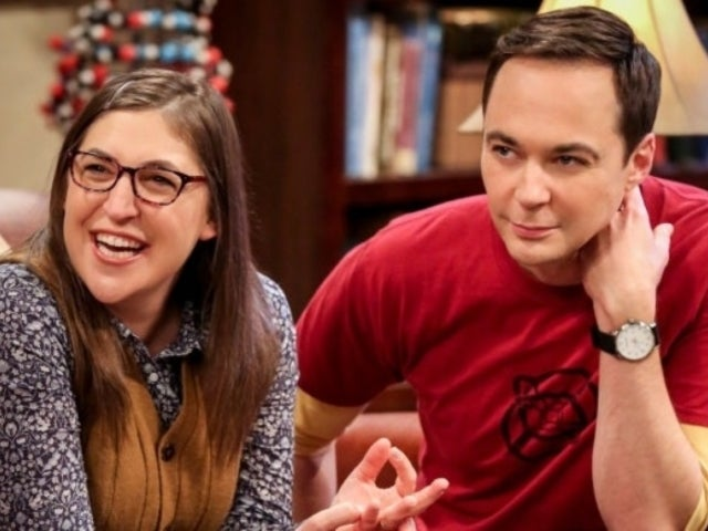 'Big Bang Theory' Co-Stars Jim Parsons and Mayim Bialik Reunite for New Fox Series